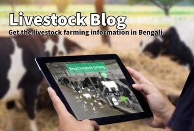 livestock blog